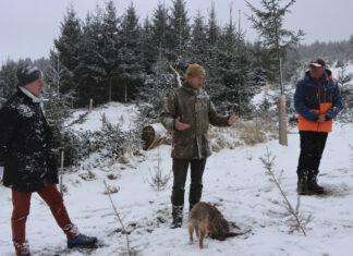 Hubert Hasenauer, Felix Montecuccoli und Nikolaus Lienbacher beim Lokalaugenschein im Wald
