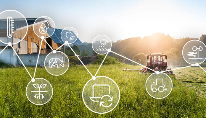 Das Foto symbolisiert die digitale Vernetzung am Bauernhof.