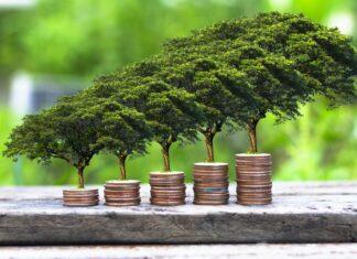Nachhaltige Geldanlage boomt.